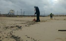 ניקוי בחוף ראשון לציון