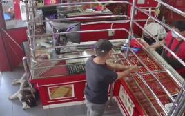 """""""השודד"""" נכנס אל החנות - וללאקי כלל לא אכפת"""