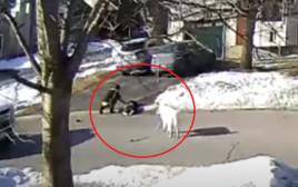 הכלבה שהצילה את בעליה ברחוב