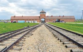 פסי הרכבת בכניסה לאושוויץ