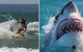 גולש מקצועי נאכל בידי כריש ימים ספורים לפני חתונתו