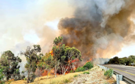 שריפה בעוטף כתוצאה מבלוני תבערה