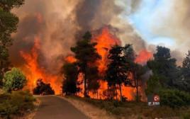 שריפה בנווה אילן