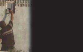 פלסטיני יורה דרך חור בגדר רצועת עזה