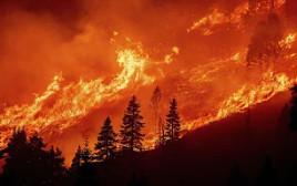 השריפה באגם טאהו, קליפורניה