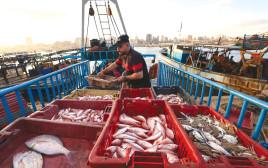 דייגים בעזה