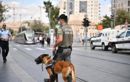"""כוחות משטרה ומג""""ב בעיר העתיקה"""