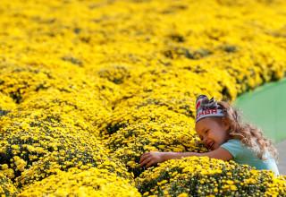 ילדה עומדת ליד מרבד פרחים