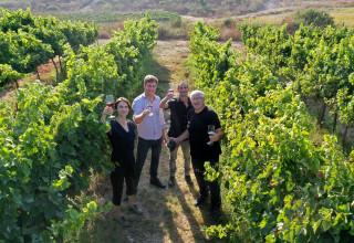 יומן יין, הרפתקה ישראלית - היוצרים