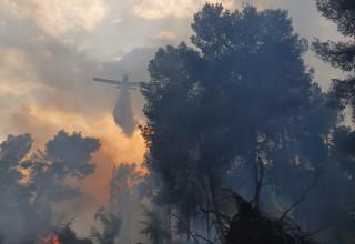 כיבוי השריפה ביער קולה