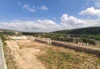 שטח פרויקט רני צים בפרדיס