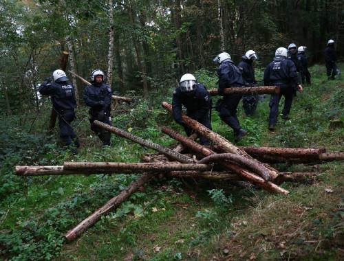 מחאה בגרמניה נגד הריסת יער לטובת סלילת כביש
