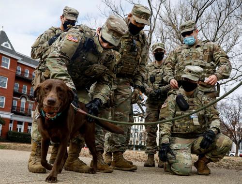 חיילי המשמר הלאומי פגשו כלב בוושינגטון