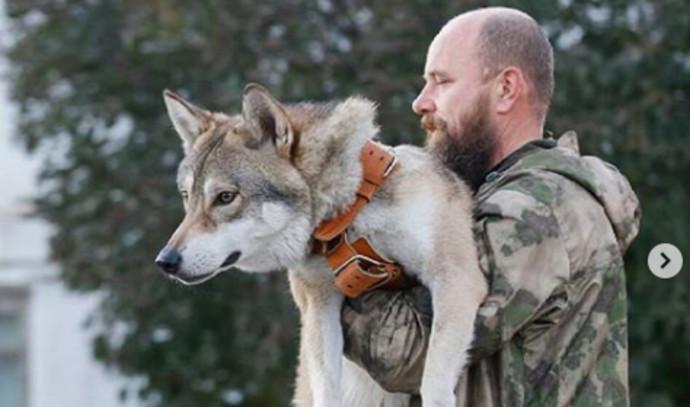 גר עם זאב