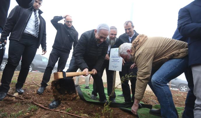 ראש הממשלה בנימין נתניהו נוטע עץ בגוש עציון