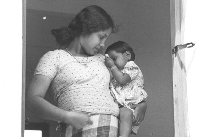 אם ובנה יוצאי קהילת קוצ'ין במושב עלמה