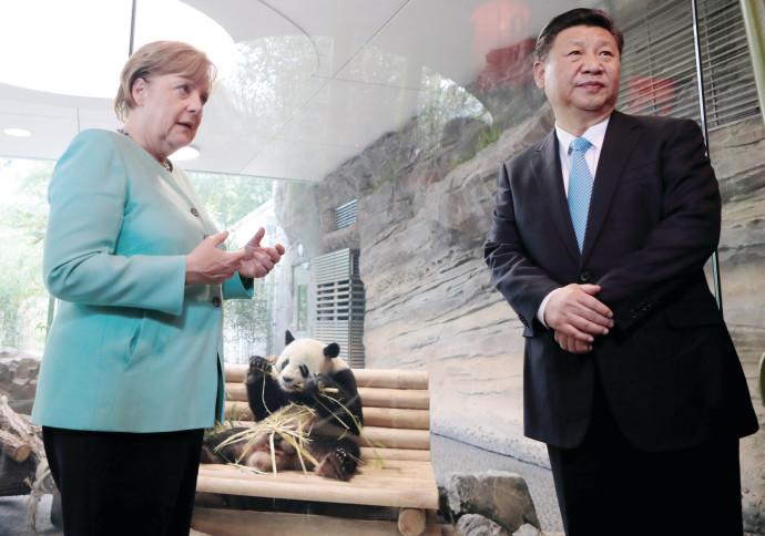 נשיא סין שי ג'ינפינג עם קנצלרית גרמניה אנגלה מרקל