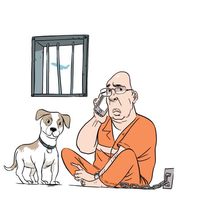 רון קופמן והכלבה