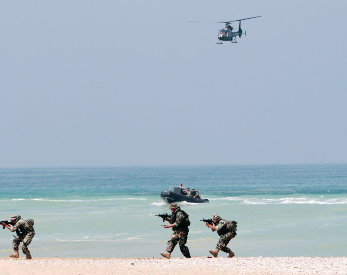 יחידת אריות הים, צבא ארצות הברית