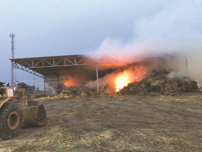 טרור העפיפונים - שריפה בכיסופים