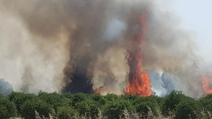 שריפה בעוטף עזה - טרור העפיפונים
