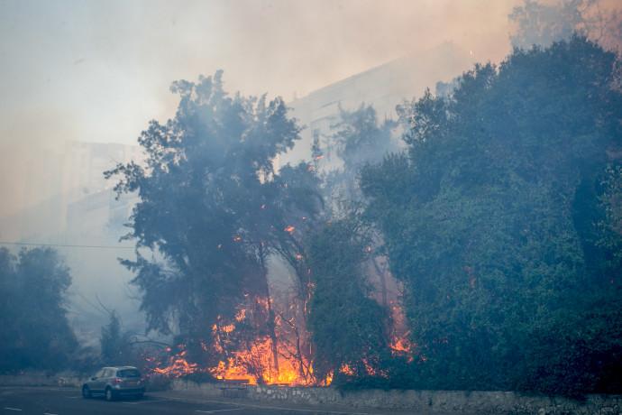 שריפה בחיפה ב-2016