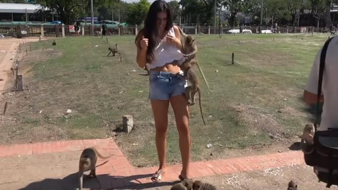 ניסתה להצטלם עם קופים, מיד התחרטה על זה