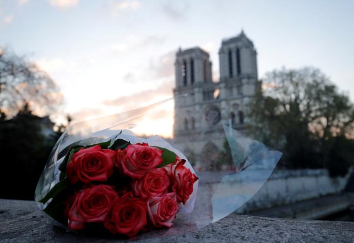 פרחים סמוך לקתדרלת נוטרדאם