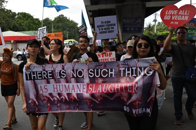 הפגנה נגד אכזריות כלפי בעלי חיים