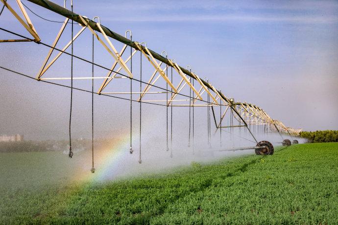 שטח חקלאי