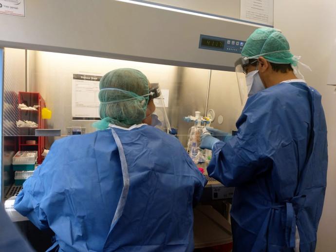 בדיקות קורונה במעבדה למיקרוביולוגיה במרכז הרפואי פדה-פוריה