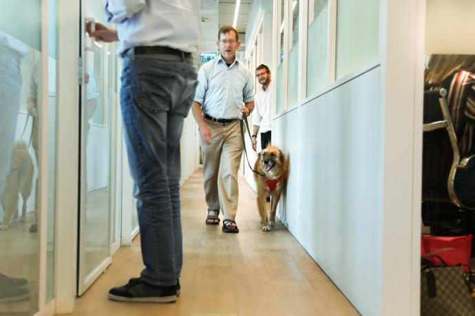 הכלבה דובי מגיעה למשרד עם הבעלים שלה, דיויד וקסמן