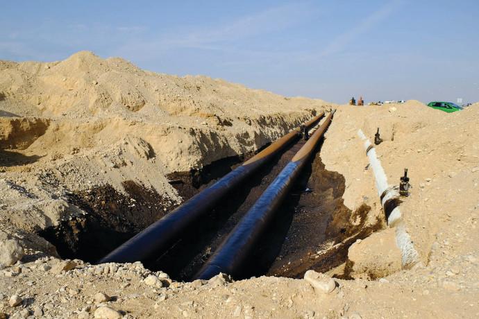 צינור הנפט