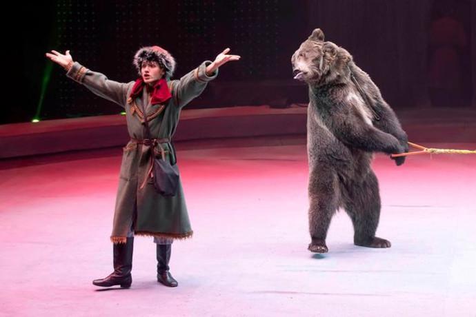 הדוב והמאלף בקרקס ברוסיה