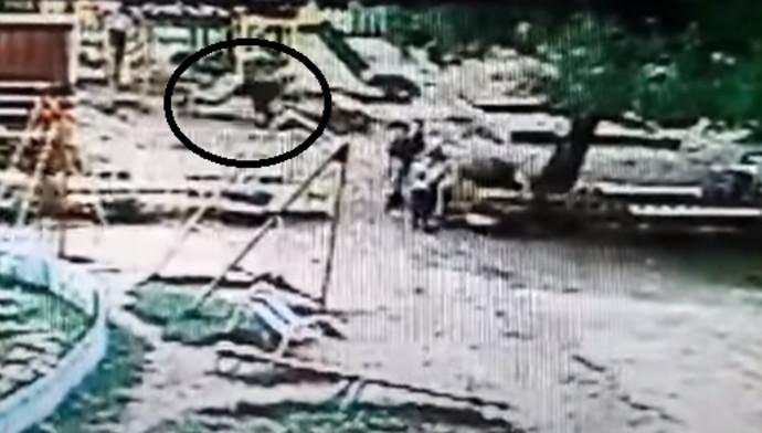 בן 9 עף מנדנדה אל מותו