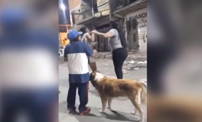 הכלב מנסה להפריד בין שתי הנשים