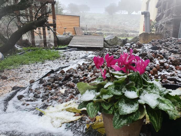 שלג ראשון לעונה במרום גולן