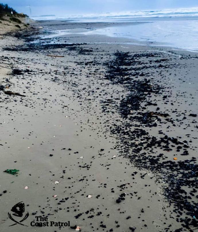 זפת טרייה על פני החוף