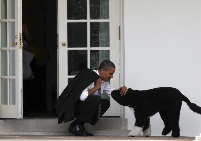 ברק אובמה והכלב בו