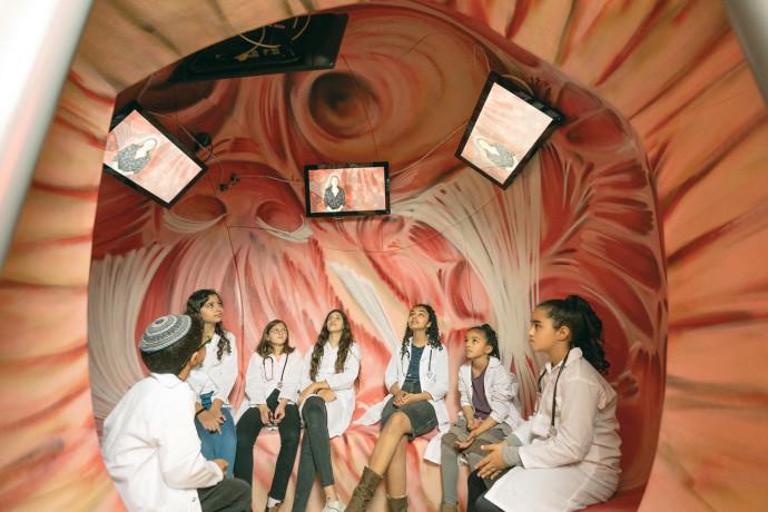 מוזיאון הרפואה בטכנודע, חדרה