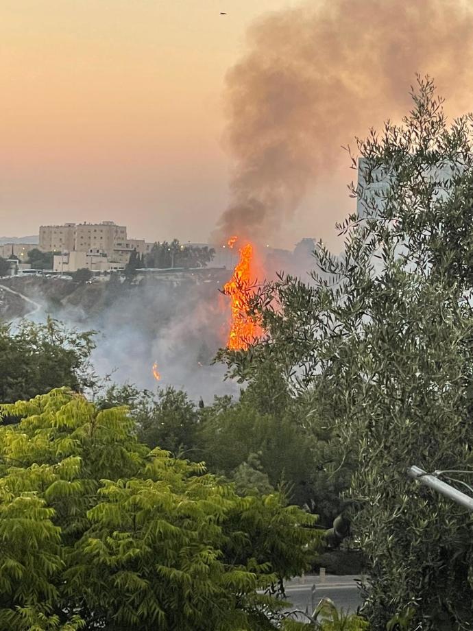 שריפה בגבעת שאול בירושלים