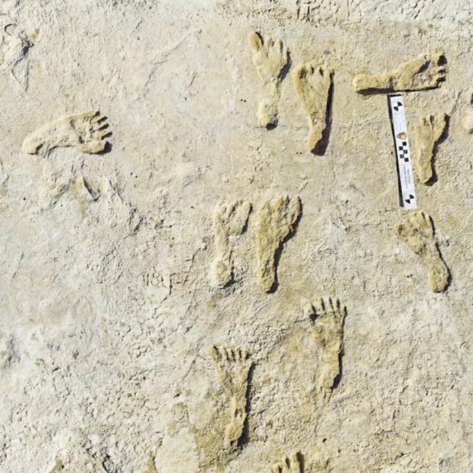 טביעות הרגליים. עדויות חדשות