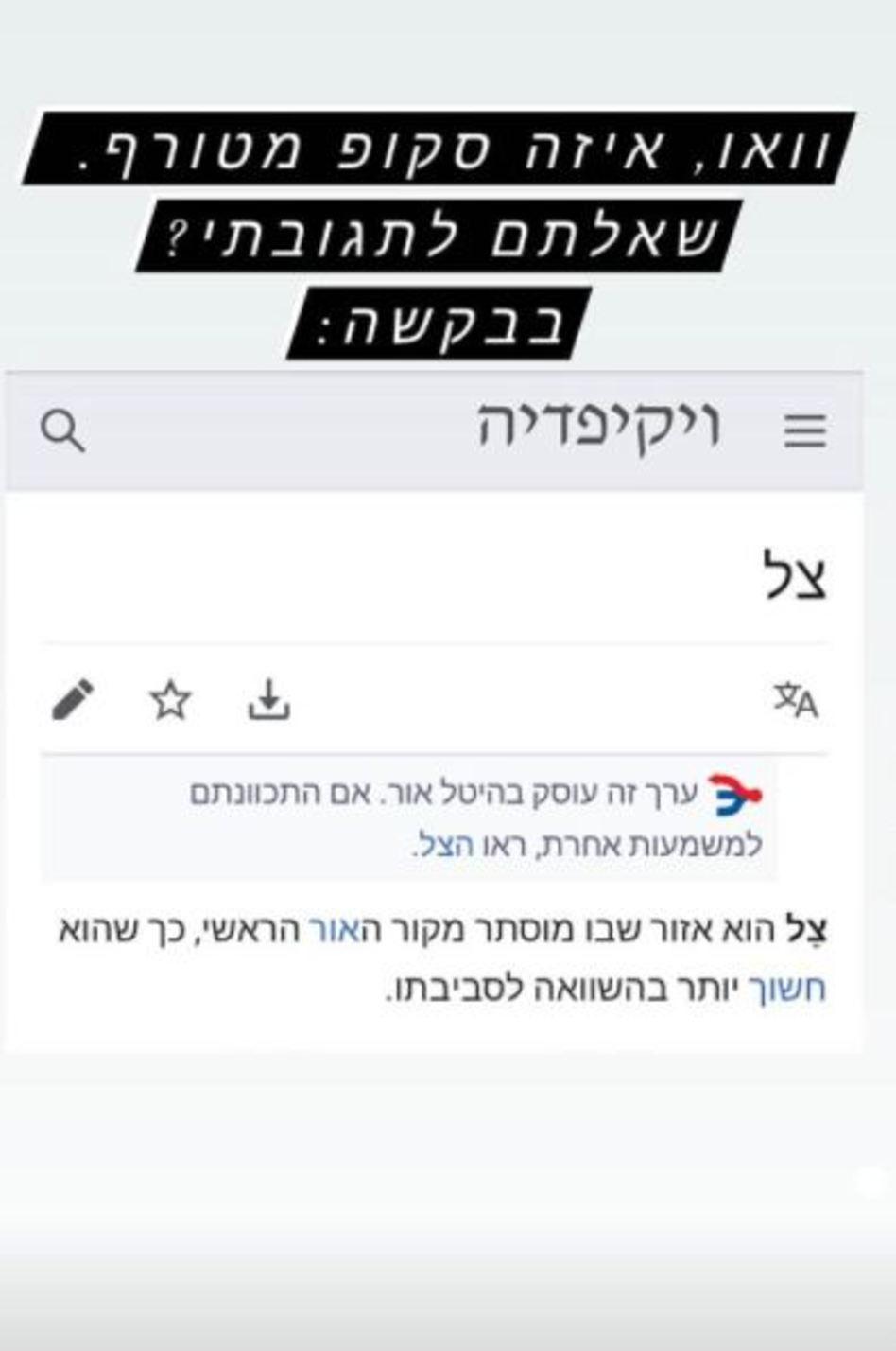 ניר אבישי כהן מגיב לצל (צילום: צילום מסך אינסטגרם)