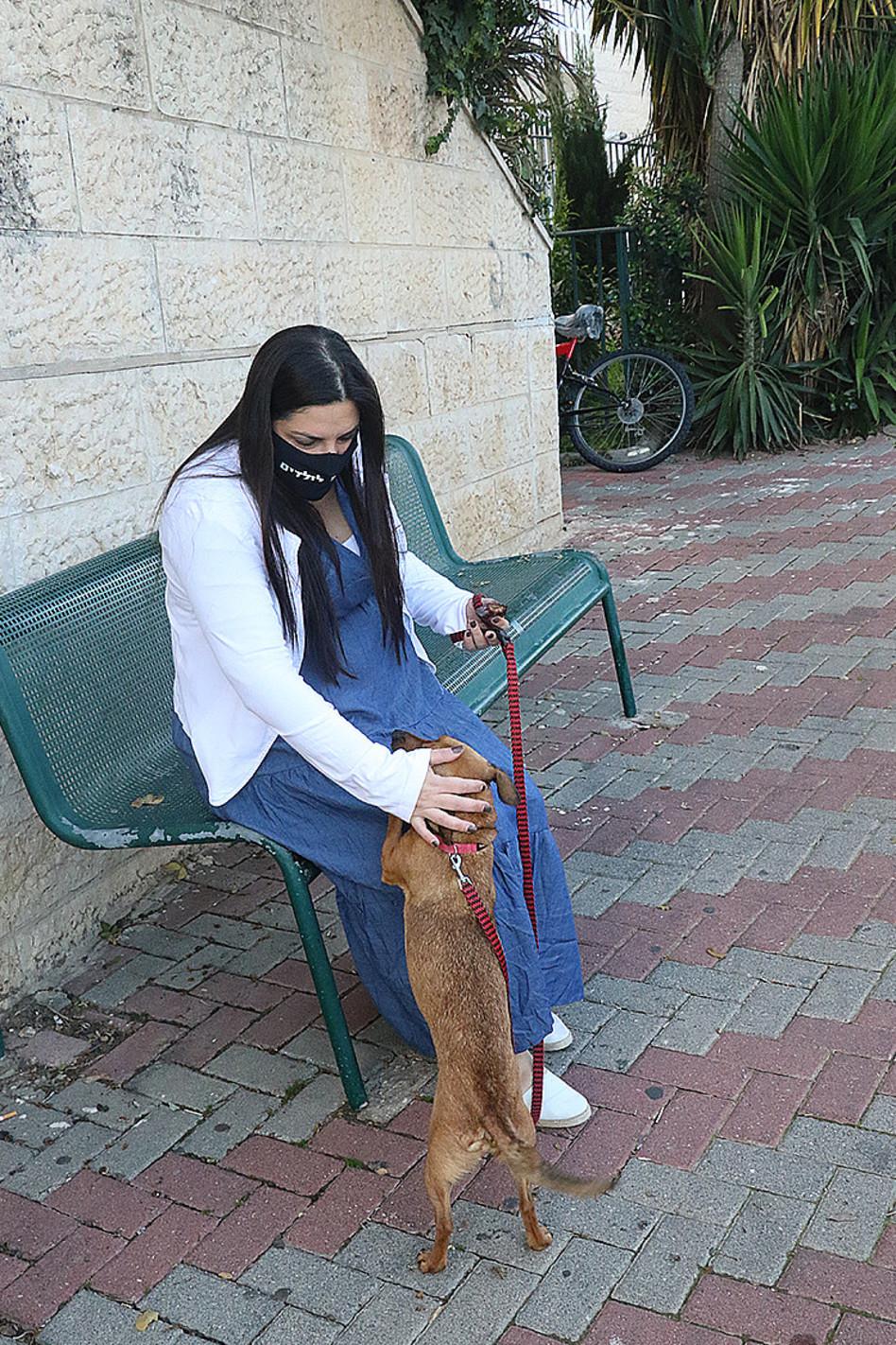 לוקחת מנוחה עם הכלב (צילום: פול סגל)