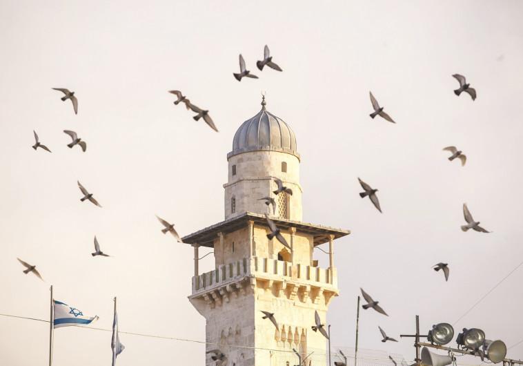 החוק קלקל את פועלו של ריבלין. מסגד, צילום: פלאש 90