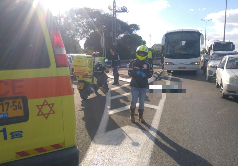 הולכת רגל כבת 60 נהרגה מפגיעת אוטובוס בכביש 4