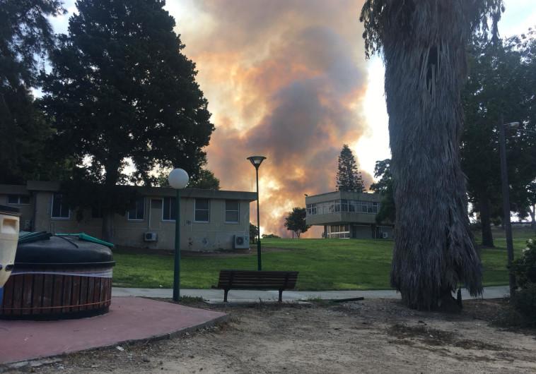 שריפה בין זיקים לכרמיה