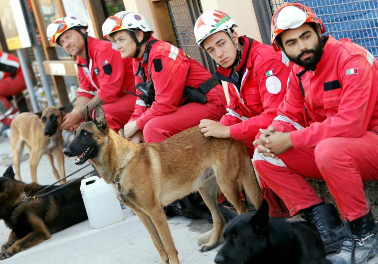 צוותי החילוץ עם כלבי האיתור באיטליה. צילום: רויטרס