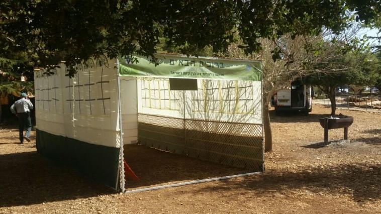 """סוכת יער של הקרן הקיימת לישראל. צילום: דוברות קק""""ל"""