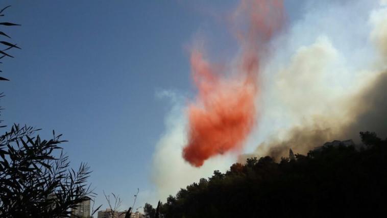 השריפה בחיפה. צילום: רשת ״קבוצת העיתונאים רוטרניק״